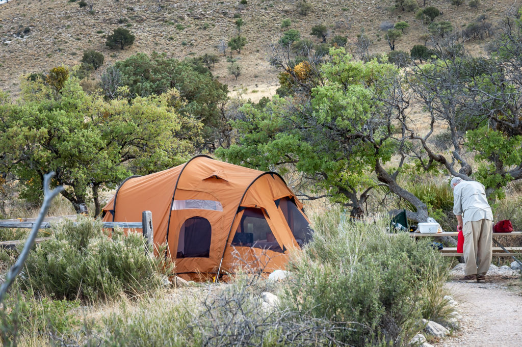 plants to avoid when hiking camping